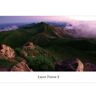 Layer Forest 2